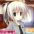 cocaty(こかてぃ)