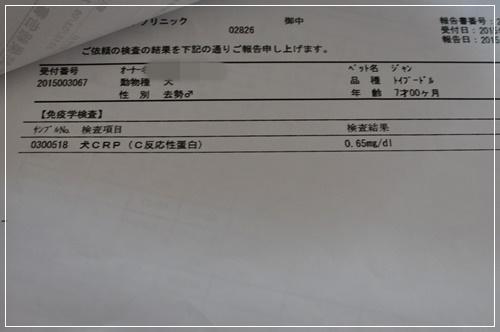 DSC_0706 1