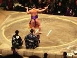 2015_1月相撲34