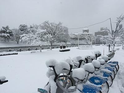 ST10201502月雪