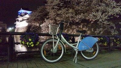2015富山夜桜
