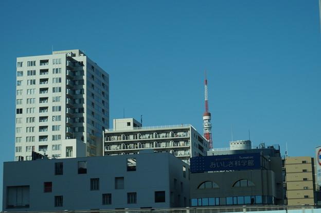 ビルから覗く東京タワー