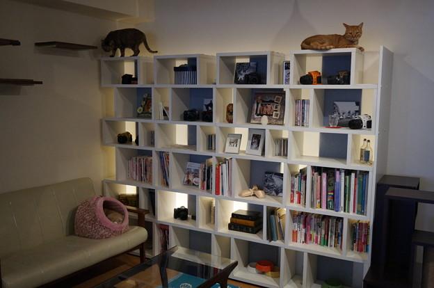 オサレな本棚