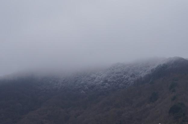 山の頂上は真っ白