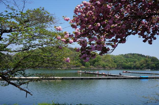 お花と湖と釣り人