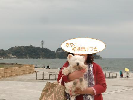 湘南オフ会1