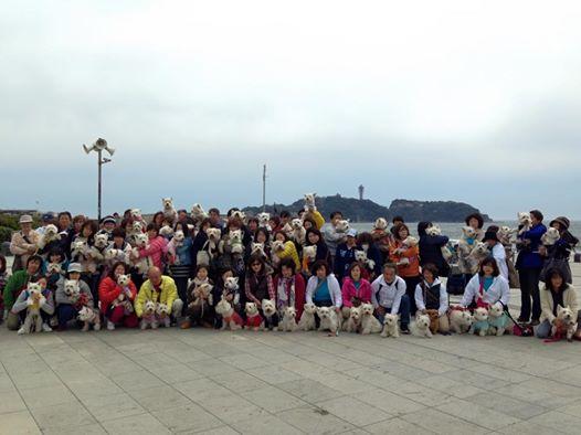 湘南オフ会記念写真