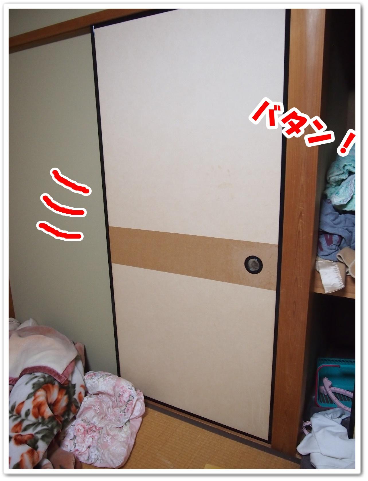 P1011253.jpg