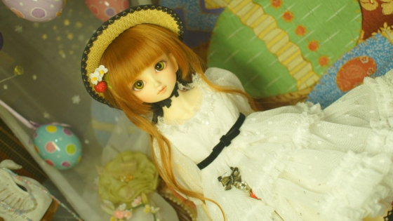 DSC08346.jpg