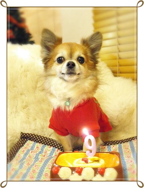 131225happy birthday