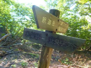 梅雨の合間に武奈ヶ岳♪