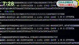 国立科学博物館 人類研究部 神澤秀明研究員 「こちらが実際に配列分析を行ったあとの生のデータ。」