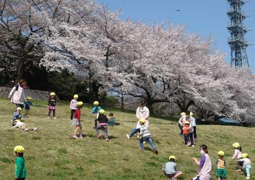 桜に子供-2