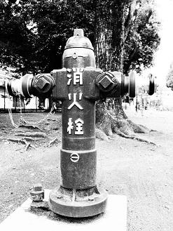 2-8消化栓f