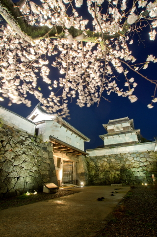 150327福岡城さくらまつり