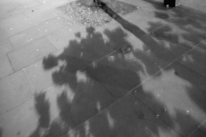 ロンドンの暗闇で5