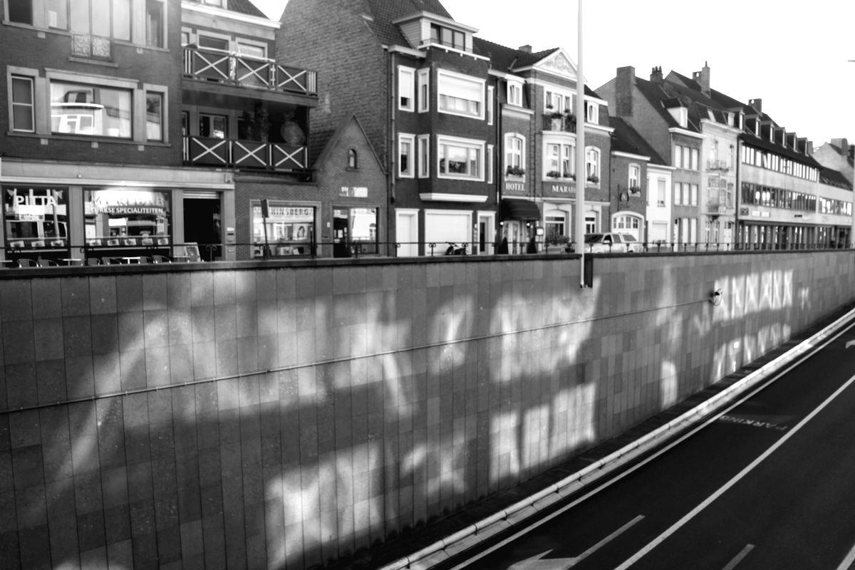 光の壁ブルージュ