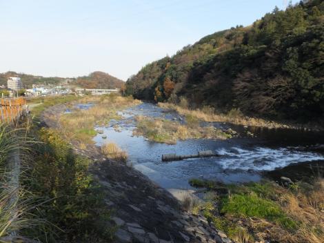 太閤橋より早川下流を望む