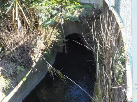 荻窪用水・丸塚隧道入口