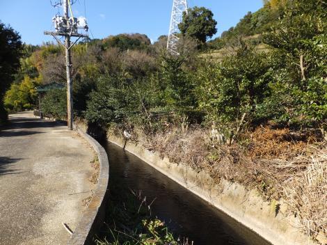 荻窪用水・丸塚隧道入口付近