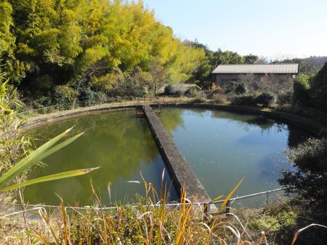 山縣水道水源池