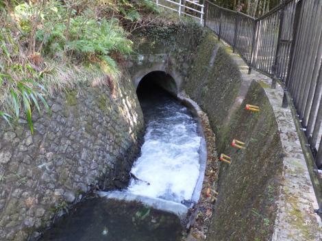 荻窪用水・桜田隧道入口