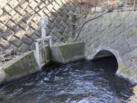 荻窪用水・桜田隧道出口、板橋用水分水門