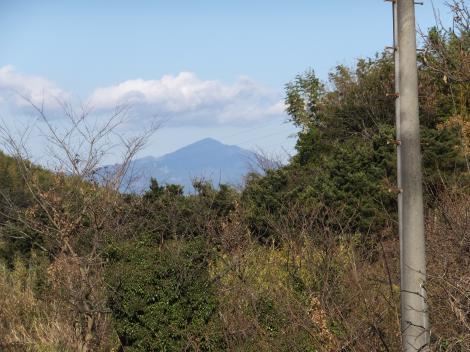 板橋用水から大山を望む
