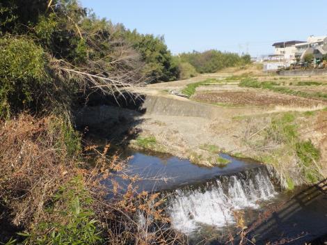 伯母様橋より鈴川上流を望む