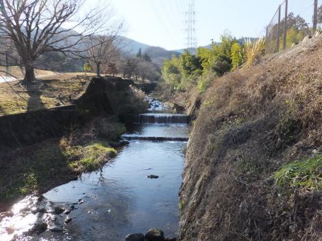 伊勢原CC沿いを流れる鈴川