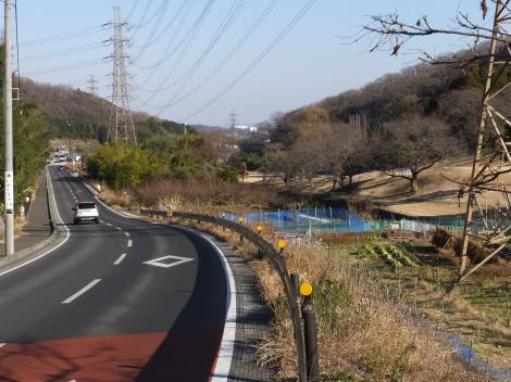 大山街道・伊勢原CC沿いを流れる鈴川