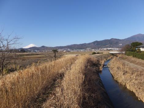 大畑橋より鈴川上流を望む