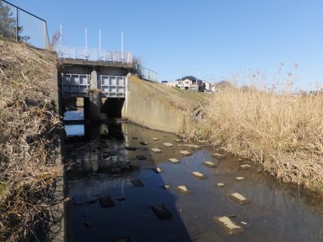 鈴川の古川樋門