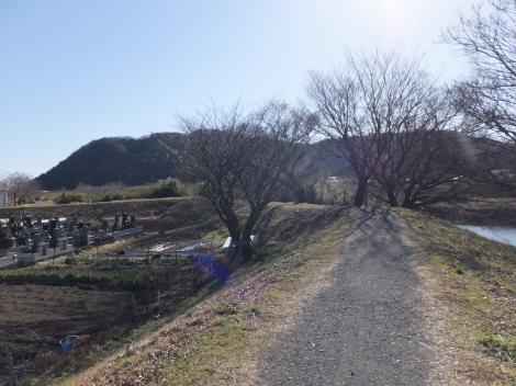 金目川左岸堤防上の散策路