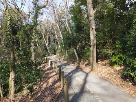 座間谷戸山公園散策路