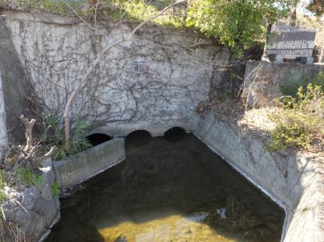 堤防内側の三ツ水門
