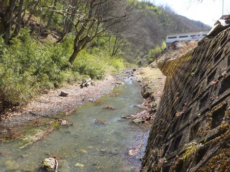 印川・三郷町市川公園前付近。