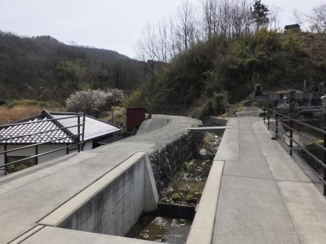 中村橋より道場川上流を望む