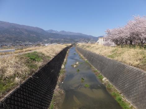 旧利根川・長沢排水機場付近