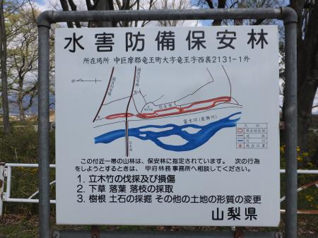 水害防備保安林看板