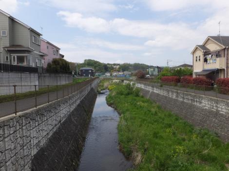 むかいだ橋より鶴見川上流を望む