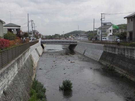 むかいだ橋より鶴見川下流を望む