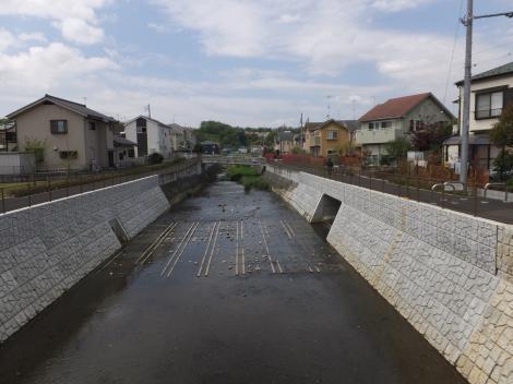 鶴見川・並木橋上流