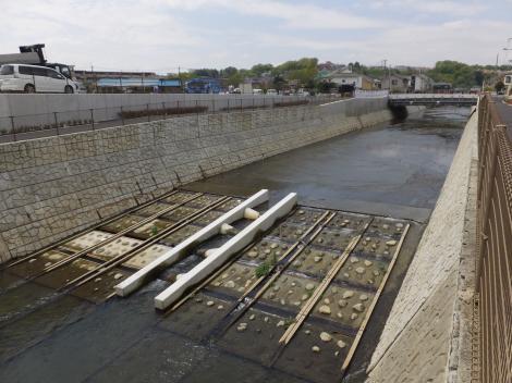 並木橋下流の鶴見川