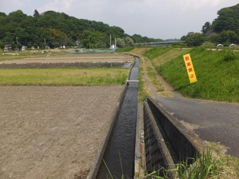 田代頭首工用水路・戸倉の田んぼ