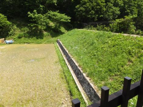 寺家ふるさと村・大池の堤防