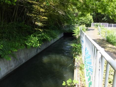 相模川右岸幹線用水路