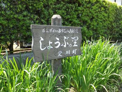 愛川町しょうぶの里