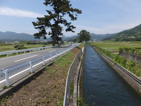 酒匂川左岸幹線用水路・足柄上郡開成町