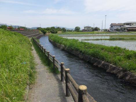 武永田用水・高台親水公園下流